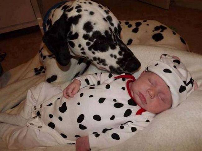 Crianças e animais de estimação (12)
