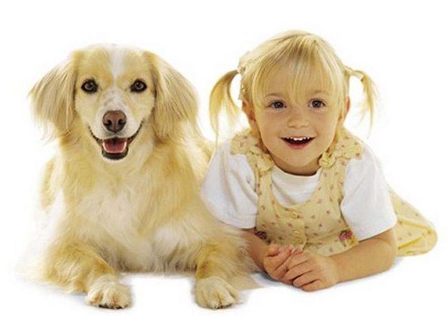 Cachorros e seus donos (16)