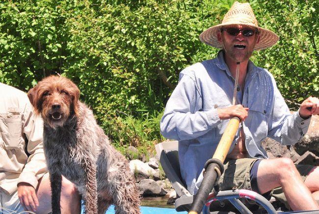 Cachorros e seus donos (8)