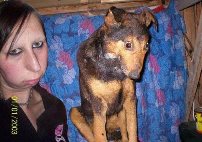 Cachorros e seus donos (3)