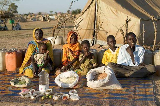 Famílias e comida (5)