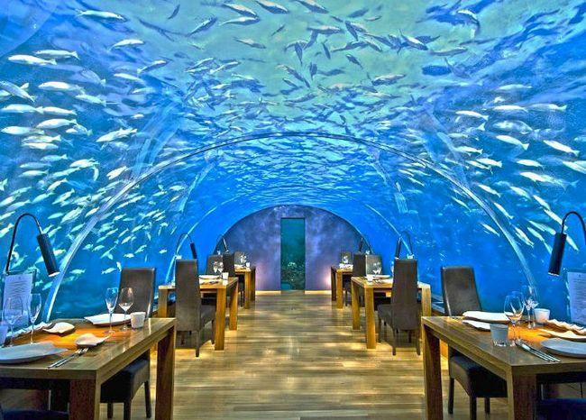 Restaurantes espetaculares (5)