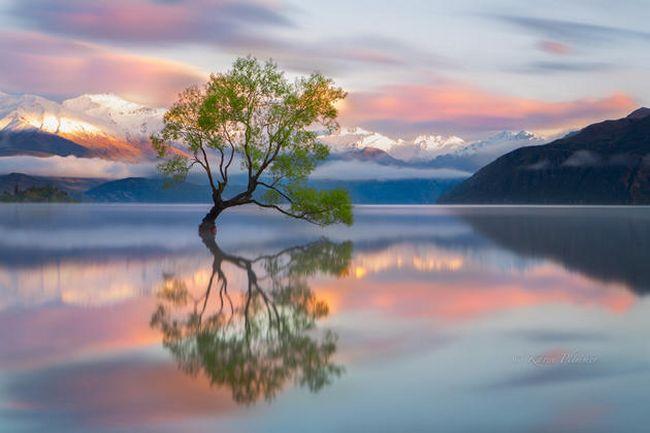 Fotos inspiradoras do planeta (6)
