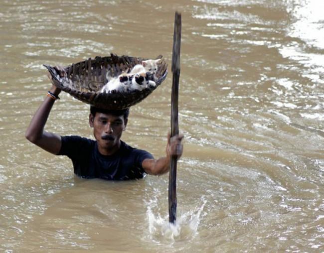 Restaurar fé na humanidade (11)