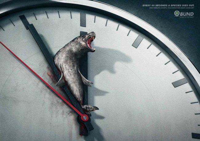 awebic-campanha-publicitaria-animais-1