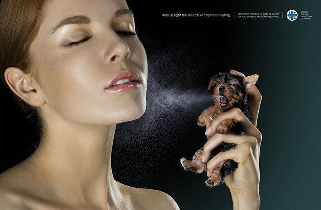 awebic-campanha-publicitaria-animais-10