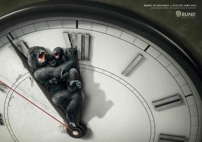 awebic-campanha-publicitaria-animais-2