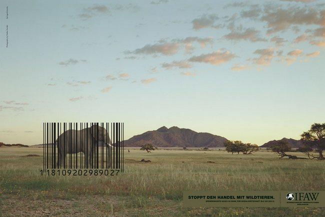 awebic-campanha-publicitaria-animais-27