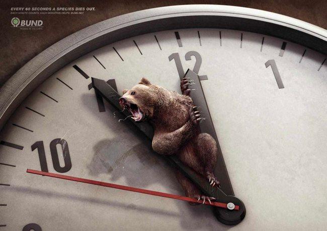 awebic-campanha-publicitaria-animais-3