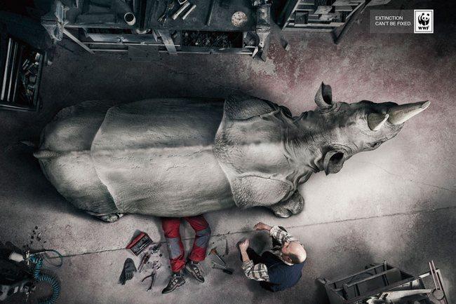 awebic-campanha-publicitaria-animais-35