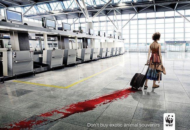awebic-campanha-publicitaria-animais-36