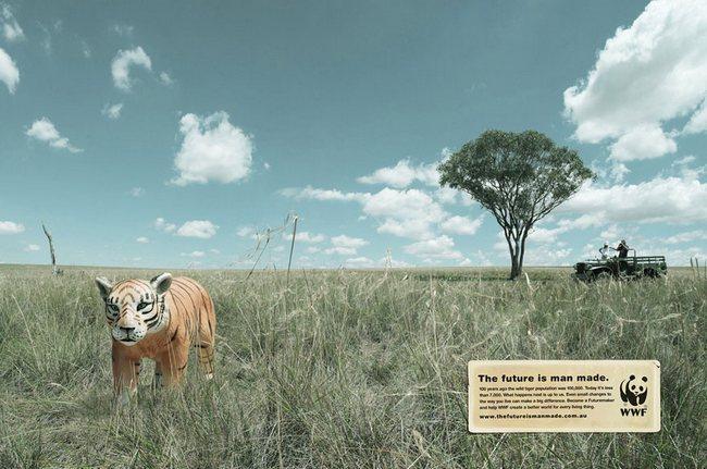 awebic-campanha-publicitaria-animais-46