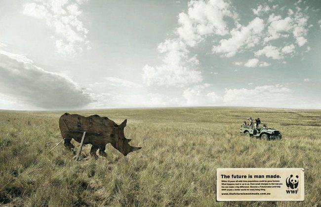 awebic-campanha-publicitaria-animais-48