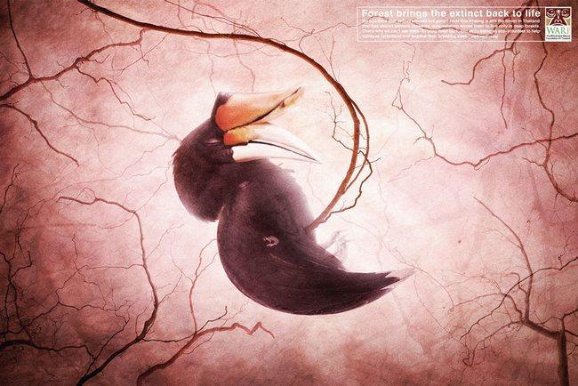 awebic-campanha-publicitaria-animais-57