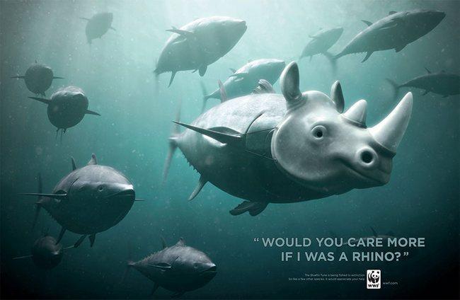 awebic-campanha-publicitaria-animais-64