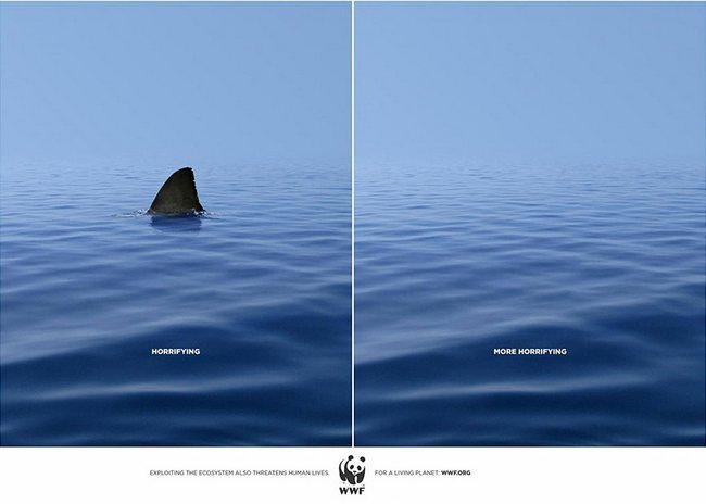 awebic-campanha-publicitaria-animais-7