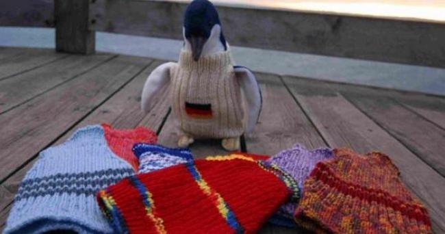 awebic-casaquinhos-pinguins-5