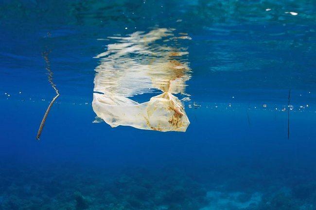 awebic-poluicao-ambiental-32