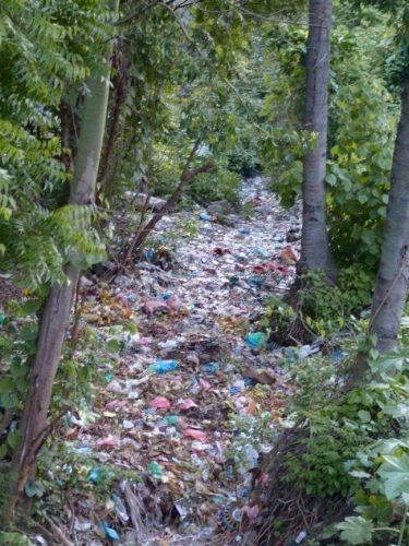 awebic-poluicao-ambiental-42