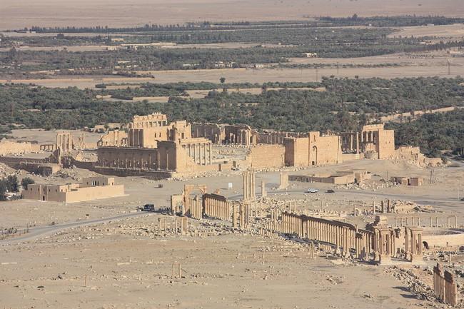 23 - Palmyra