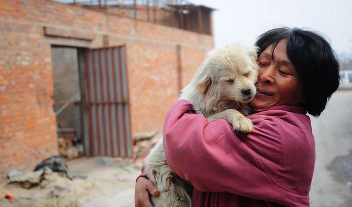 Yang com cachorro salvo