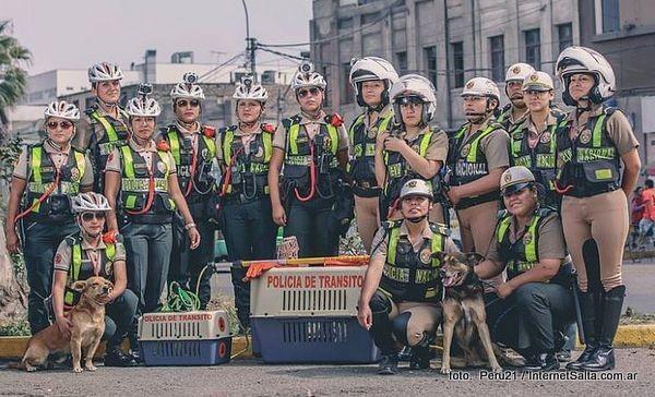 O que esse grupo de policiais está fazendo nas ruas de Lima por animais abandonados vai te emocionar