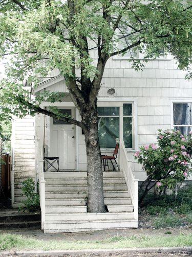 #9 Tree Hugger