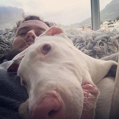 rescued-puppy-growing-up-dave-meinert-16