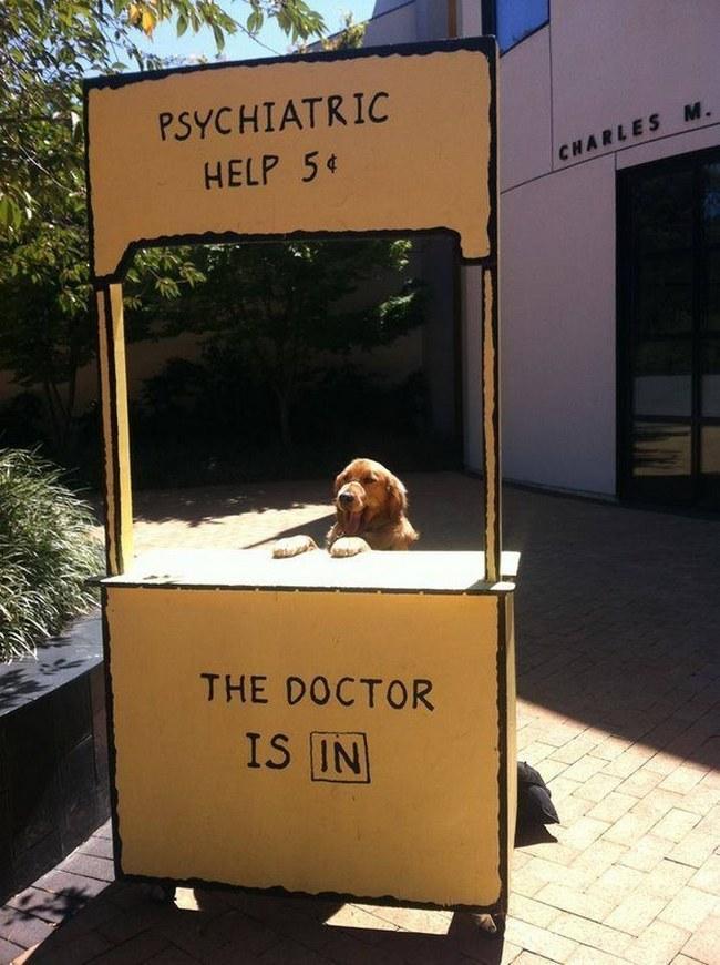 Esse é o Dr. Felicidade. Marque sua consulta e ele resolverá todos os seus problemas.