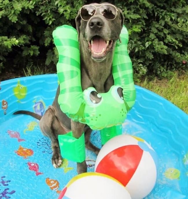 Quando há um bom motivo para colocar todos os seus acessórios favoritos, a felicidade vem com tudo. Um dia ensolarado na piscina é um bom motivo.
