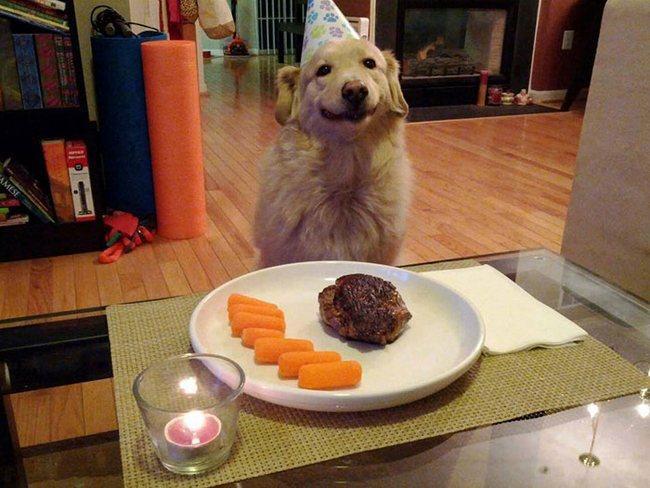 No seu aniversário é normal esperar certos mimos. O que fazer nessas horas? Sorrir. :-)
