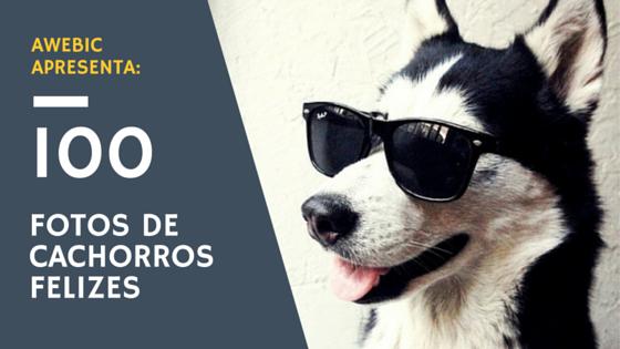 (Capa) 100 fotos de cachorros felizes