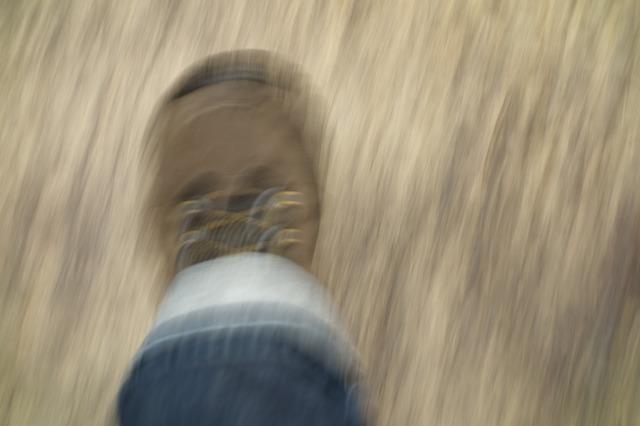 foot-538324_640