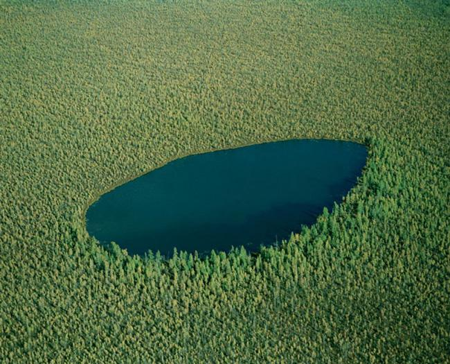 the forest lake - russia