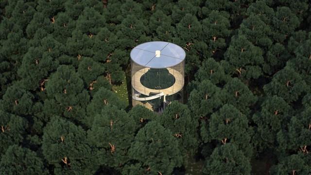 awebic-casa-na-árvore7