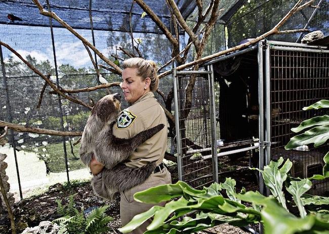 prisioneiros animais abandonados 3