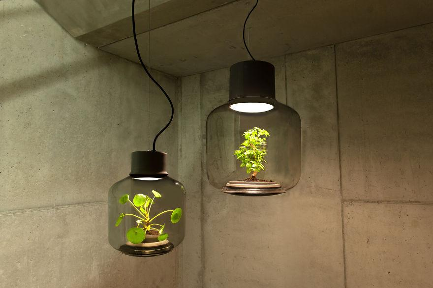 we-designed-these-lamps-to-grow-plants-in-windowless-spaces-5__880