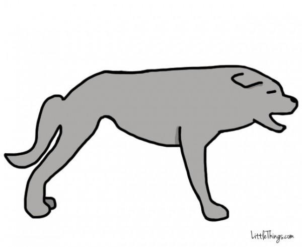 awebic-linguagem-dos-cães-7