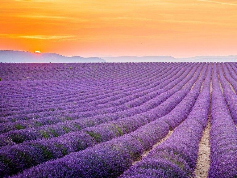 Os 50 Lugares Mais Bonitos Do Mundo Qual 233 O Seu Favorito