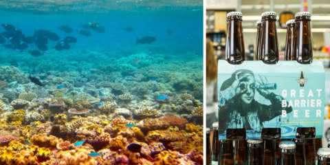 Você pode ajudar a salvar a Grande Barreira de Corais bebendo cerveja