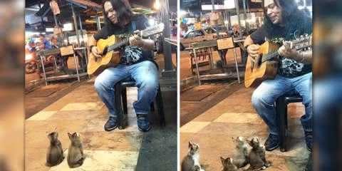 Ninguém dava atenção para esse músico, até que a plateia mais fofa chegou