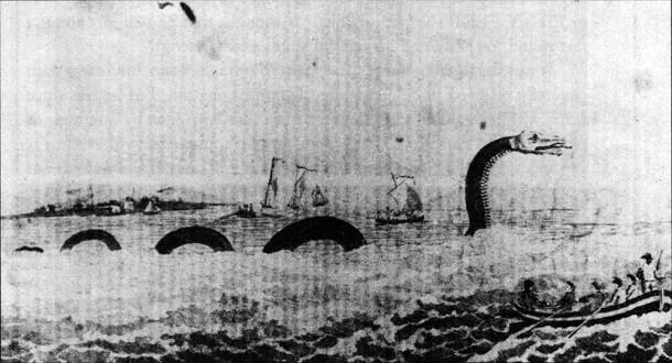 mistérios e estranhezas do fundo do mar (17)