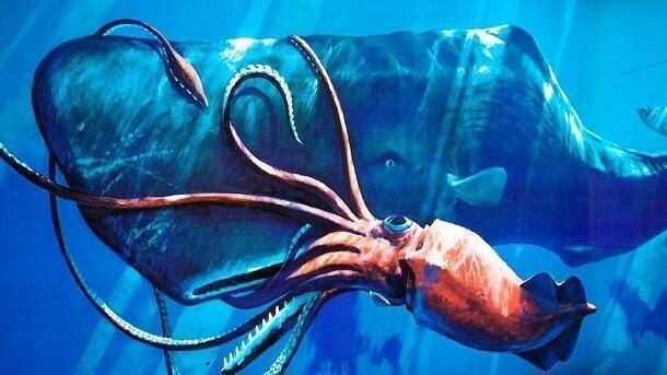 mistérios e estranhezas do fundo do mar (21)