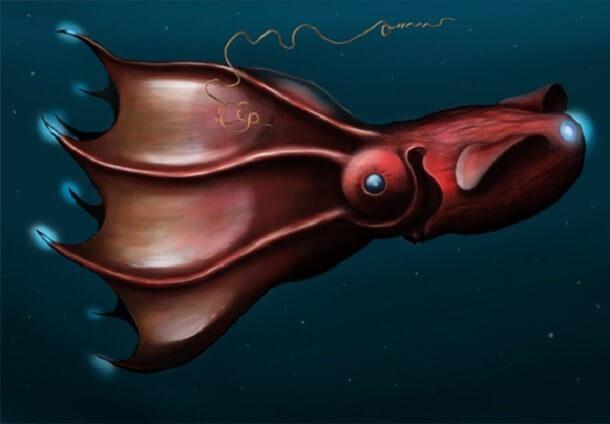 mistérios e estranhezas do fundo do mar (4)
