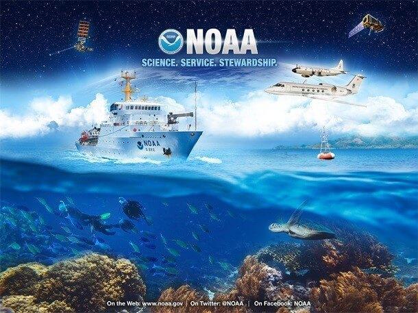 mistérios e estranhezas do fundo do mar (7)