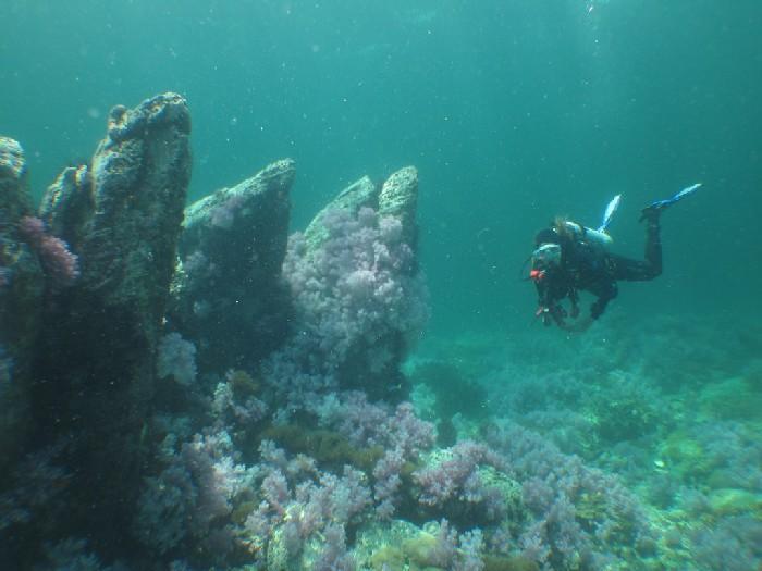 Mistérios encontrados nas profundezas do oceano 1