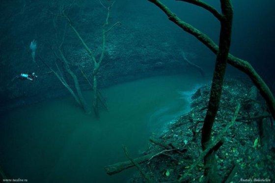 Mistérios encontrados nas profundezas do oceano 7