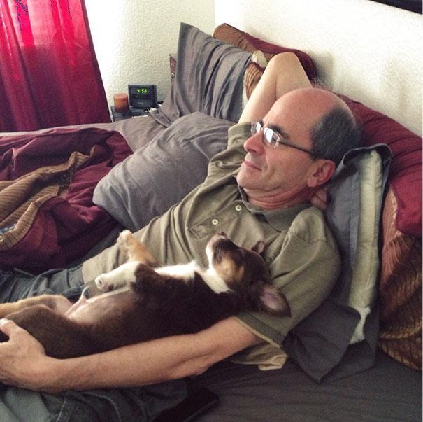 Pais que não queriam cachorros em casa 12
