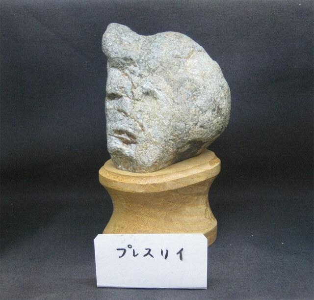 Museu Pedras Rostos (8)