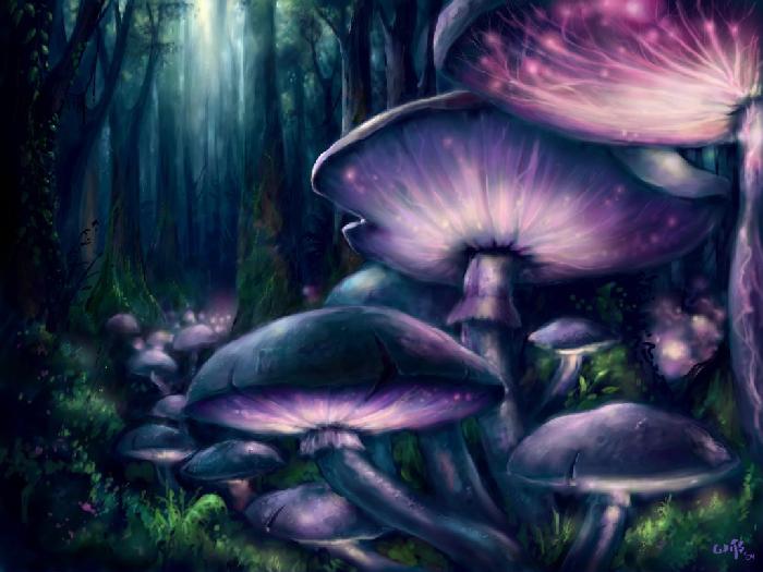 Tratamento da depressão por meio de cogumelos mágicos 3